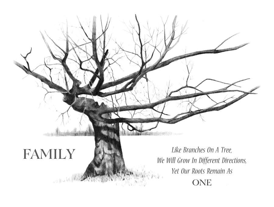Family Tree Drawing by Joyce Geleynse