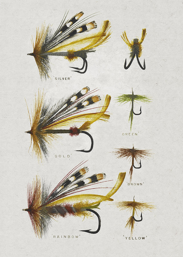 Fly Fishing Flies Drawing By Aged Pixel