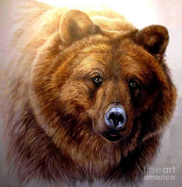 Gentle Ben Bear