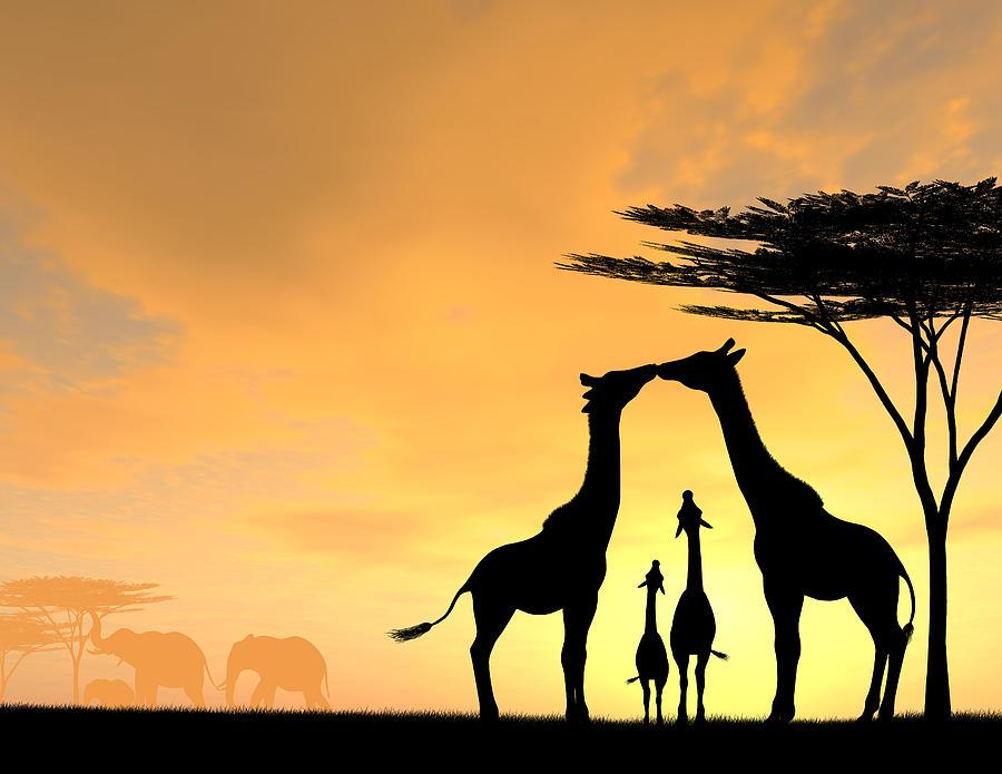 giraffe family love two