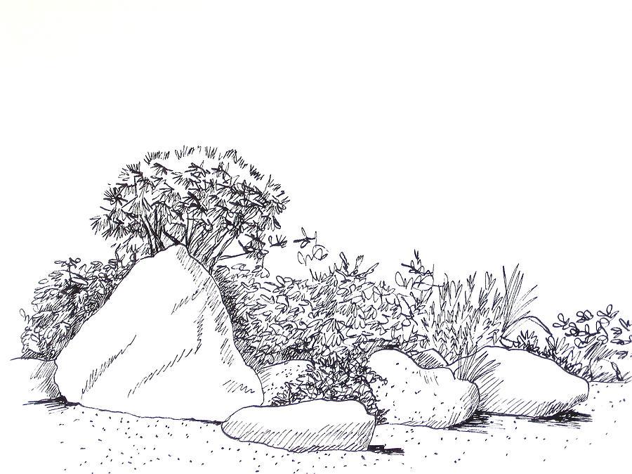 Japanese Garden Drawing by Deborah Dendler