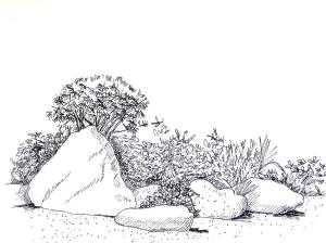 japanese garden drawing deborah dendler landscapes drawings 12th which april uploaded