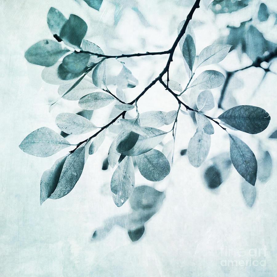 leaves in dusty blue
