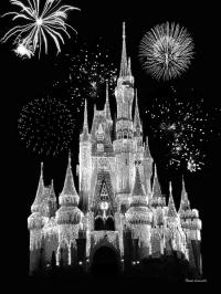 Magic Kingdom Castle In Black And White With Fireworks ...