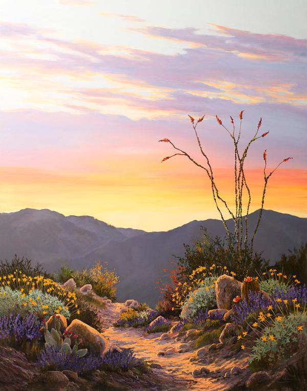 ocotillo sunrise painting jed