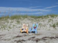 Painted Beach Chairs Photograph by Ellen Meakin
