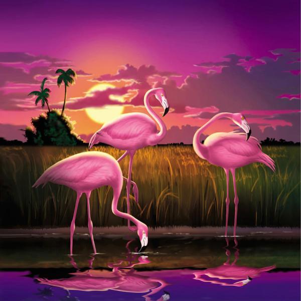 Pink Flamingos Sunset Tropical Landscape - Square