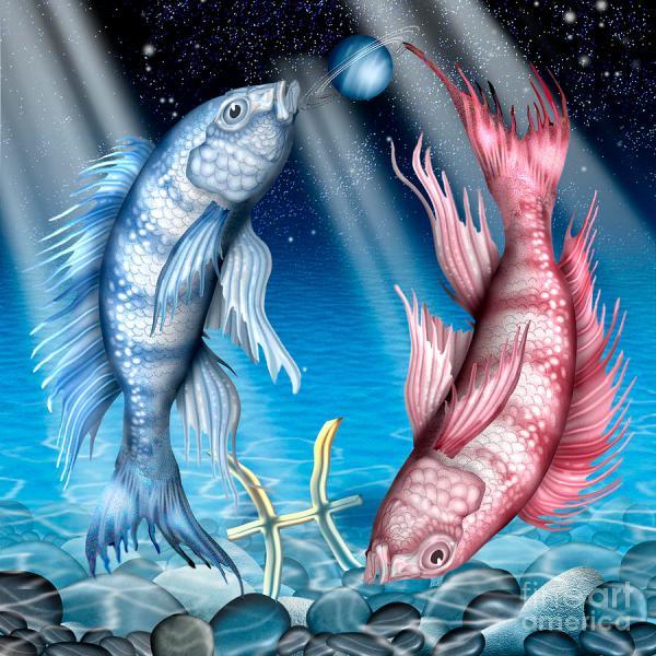 Pisces Digital Art Mgl Meiklejohn Graphics Licensing