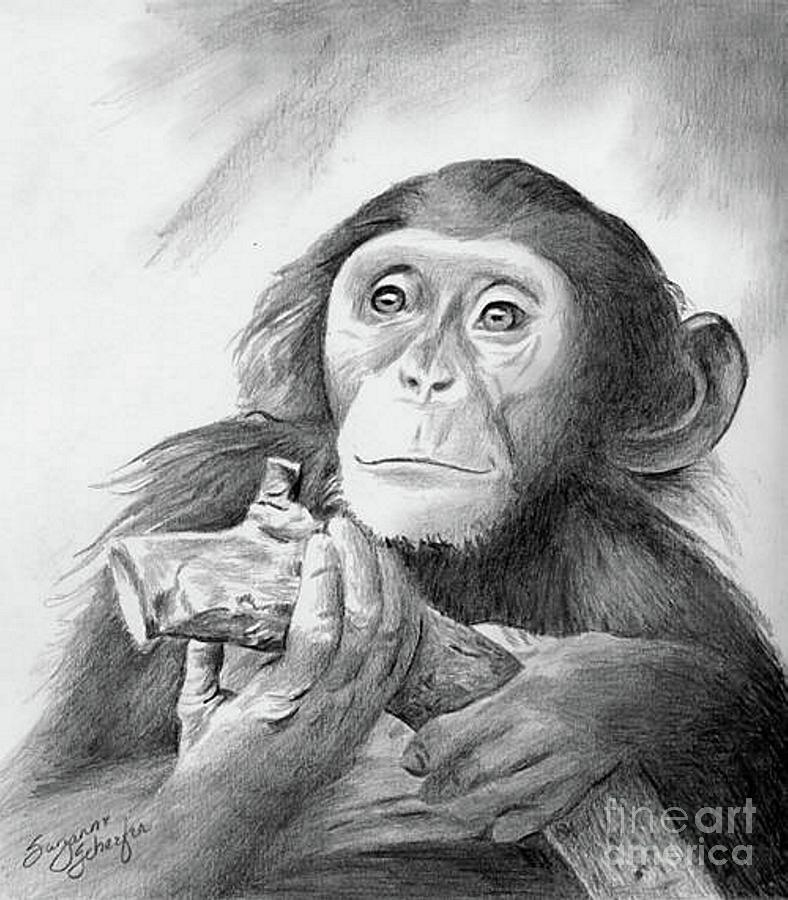 pondering chimpanzee by suzanne