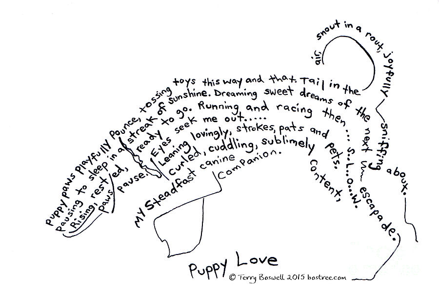 Puppy Love Drawing by Terry Boswell