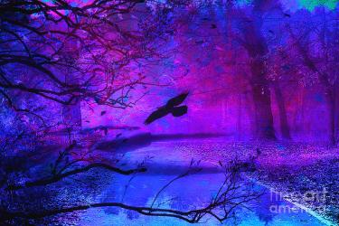 gothic forest fantasy raven nature surreal purple haunting woodlands fornal kathy print goth photograph uploaded which fineartamerica