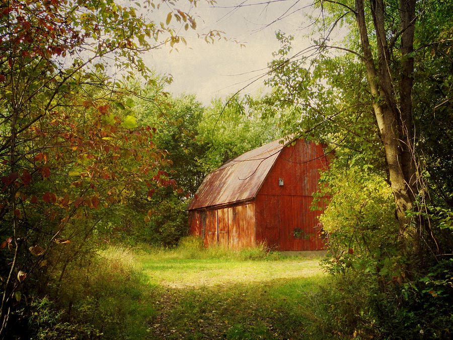 Fall Cabin The Woods Wallpaper Red Barn In The Woods Photograph By Shawna Rowe