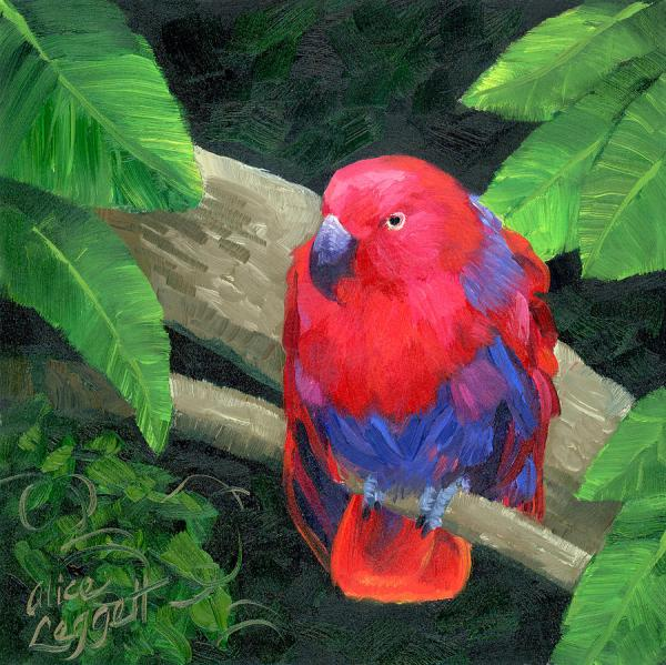 Red Bird Painting
