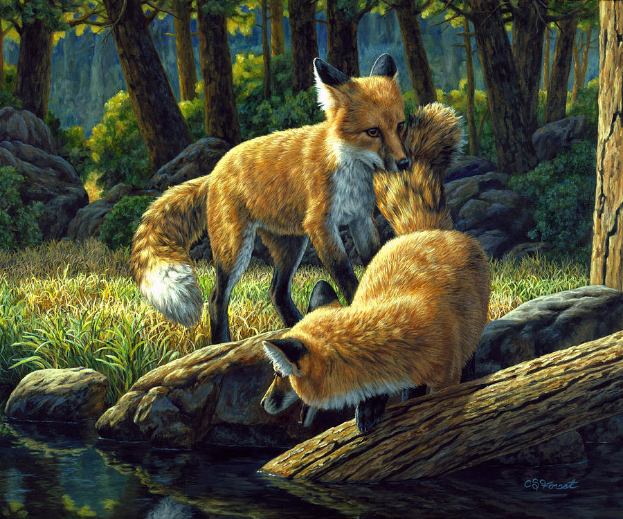 Red Foxes  Sibling Rivalry Painting by Crista Forest