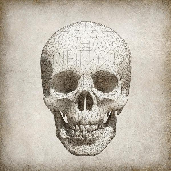 Mixed Media Skull Drawing