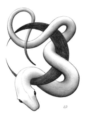snake drawing erla alberts tattoo drawings sketch snakes pencil sketches cliparts fineartamerica moon medium painting para which uploaded 6th august