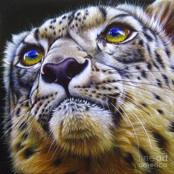 Snow Leopard Art Painting