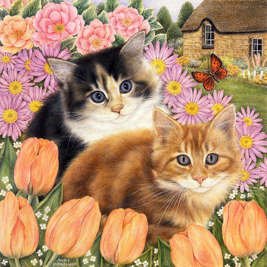 Siamese Cat Birthday Card