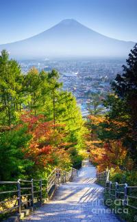 Stairway To Mountain Fuji In Japan Photograph by Noppakun ...
