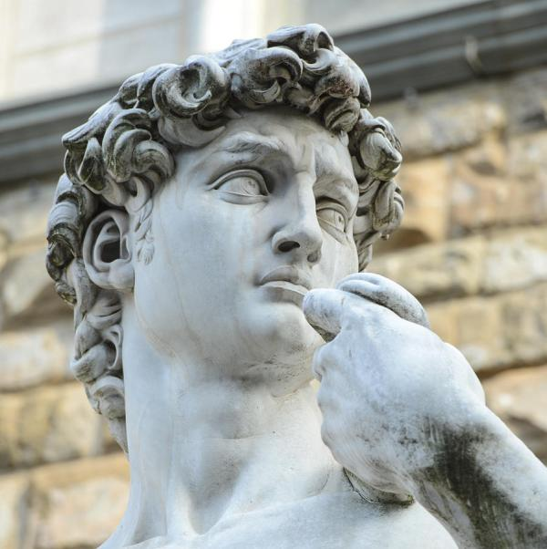 Statue Of David Michelangelo Piazza Della Signoria Brandon Bourdages