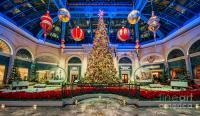 The Bellagio Christmas Tree Photograph by Aloha Art