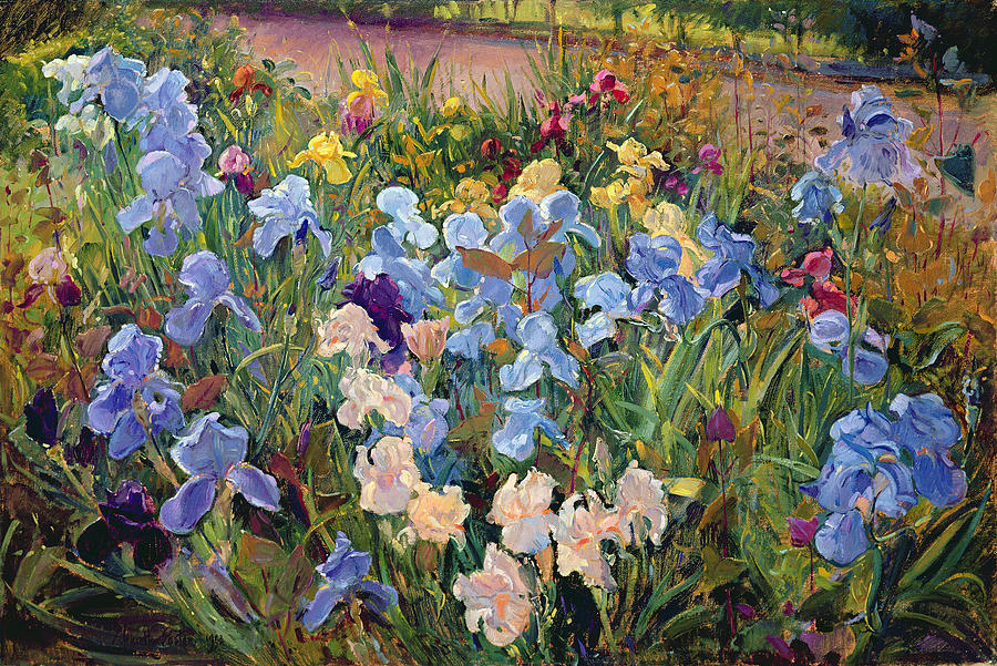 The Iris Bed Painting by Timothy Easton