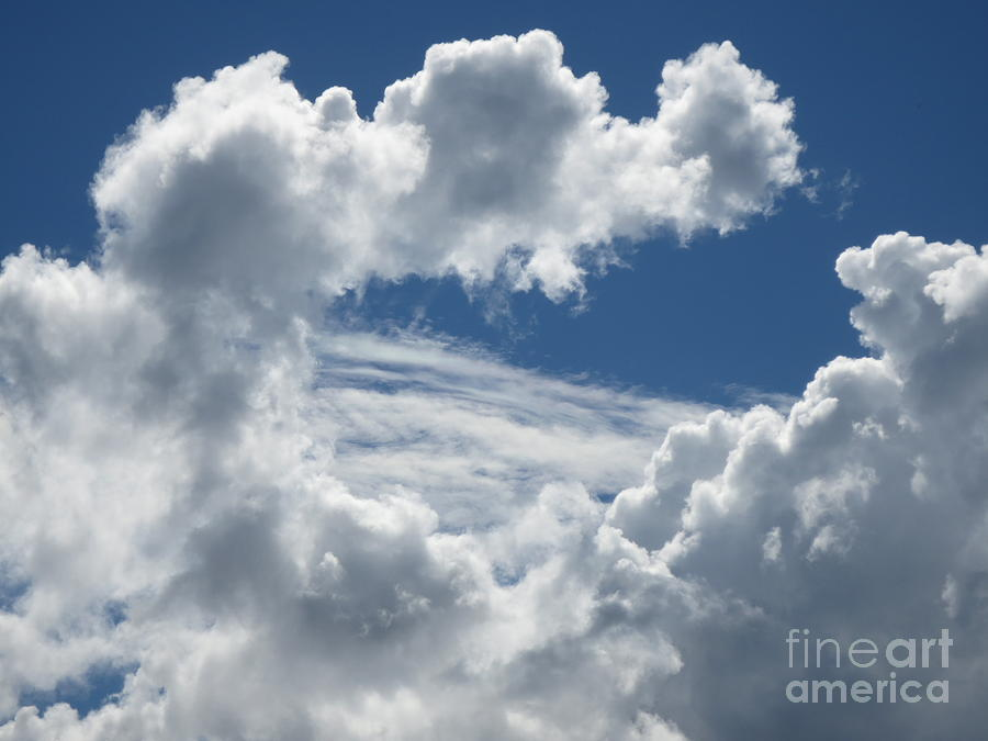 Two Cloud Types Cumulus Clouds And Cirrus Clouds