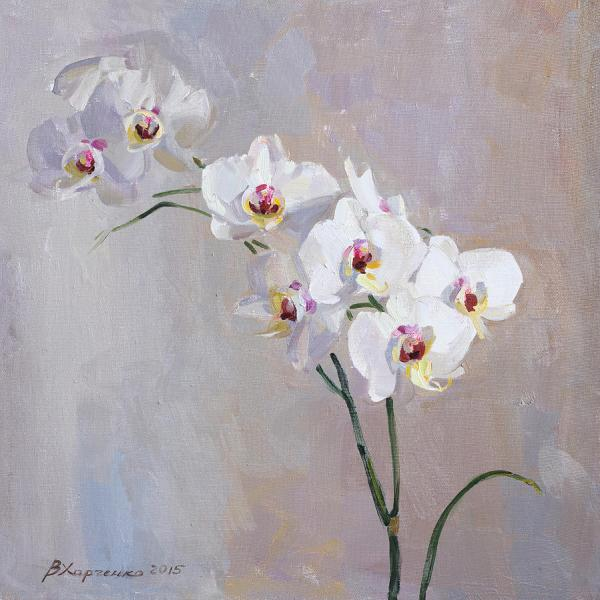 Gaeroladid White Orchid Painting