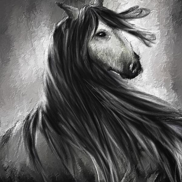 Black and White Fine Art Painting