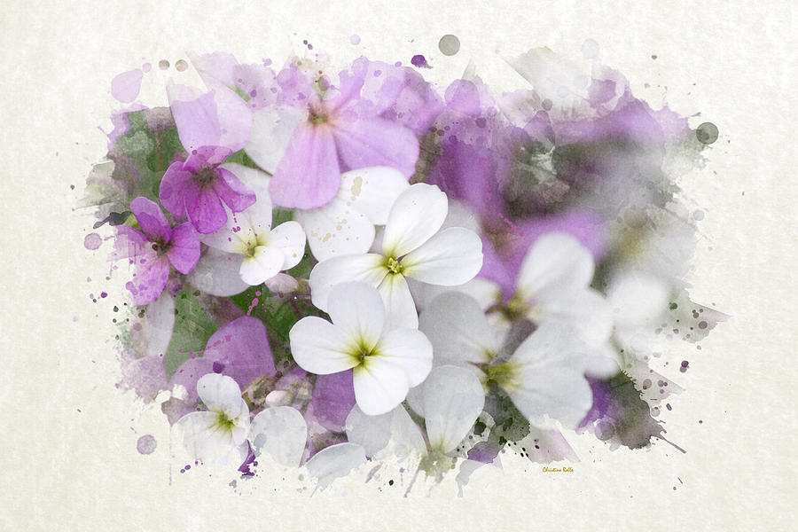 Wildflower Watercolor Art Prints for Sale