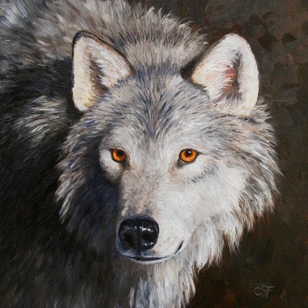 Wolf Portrait Painting Crista Forest