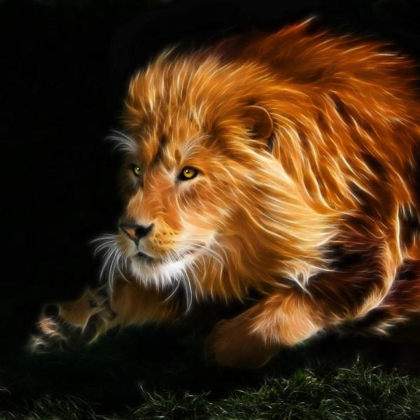 Male Lion Fractal Julie L Hoddinott