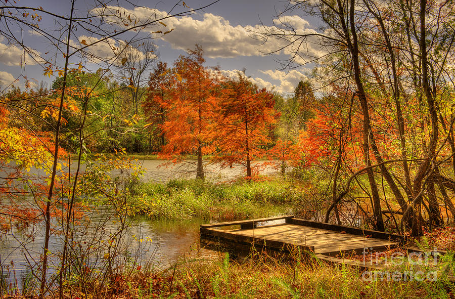 Fall Trees Wallpaper Iphone Autumn Creek Pier Photograph By Cheryl Davis