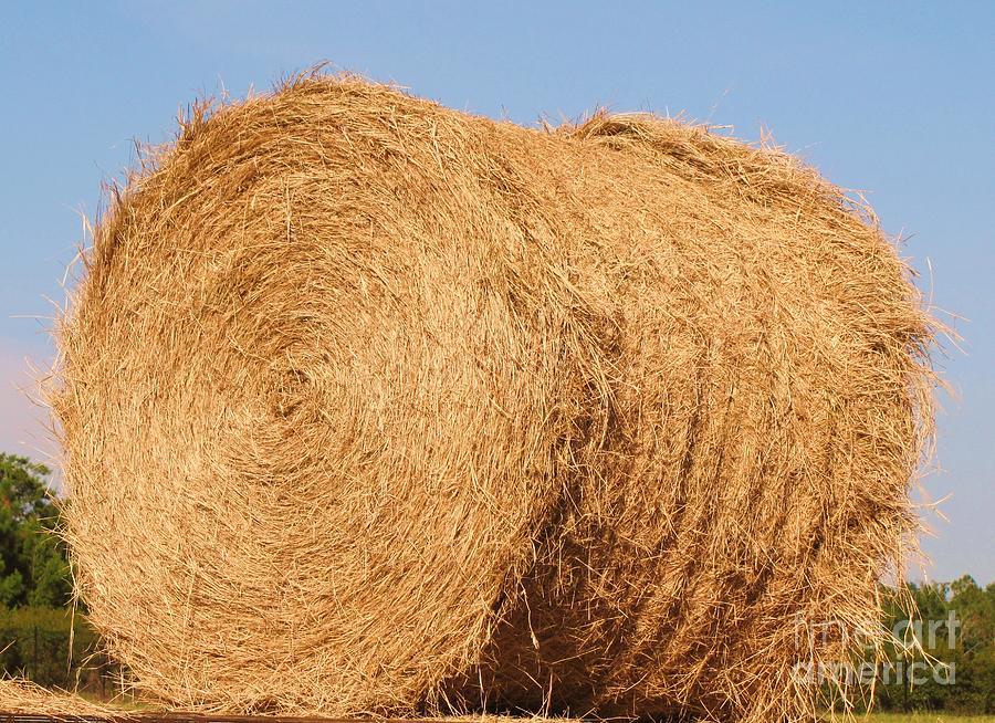 big hay bail by