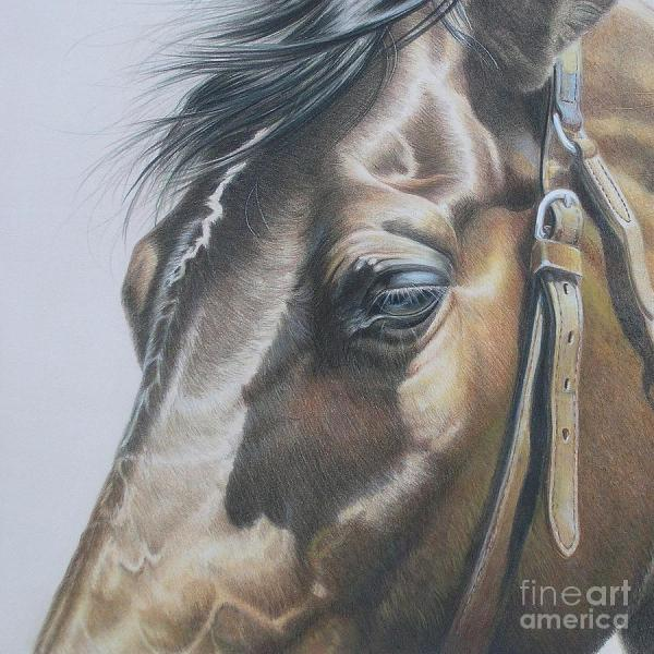 Painting Colored Pencil Drawings