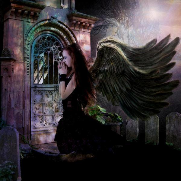 Dark Angel Digital Art Patricia Ridlon