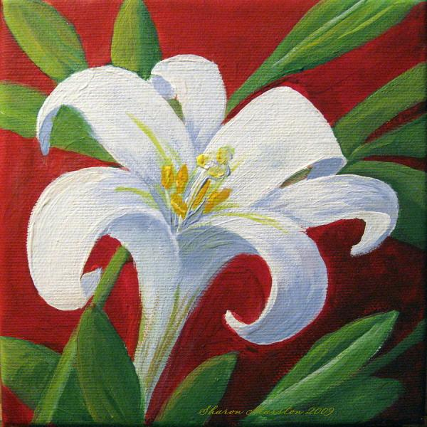 Easter Lily Sharon Marcella Marston