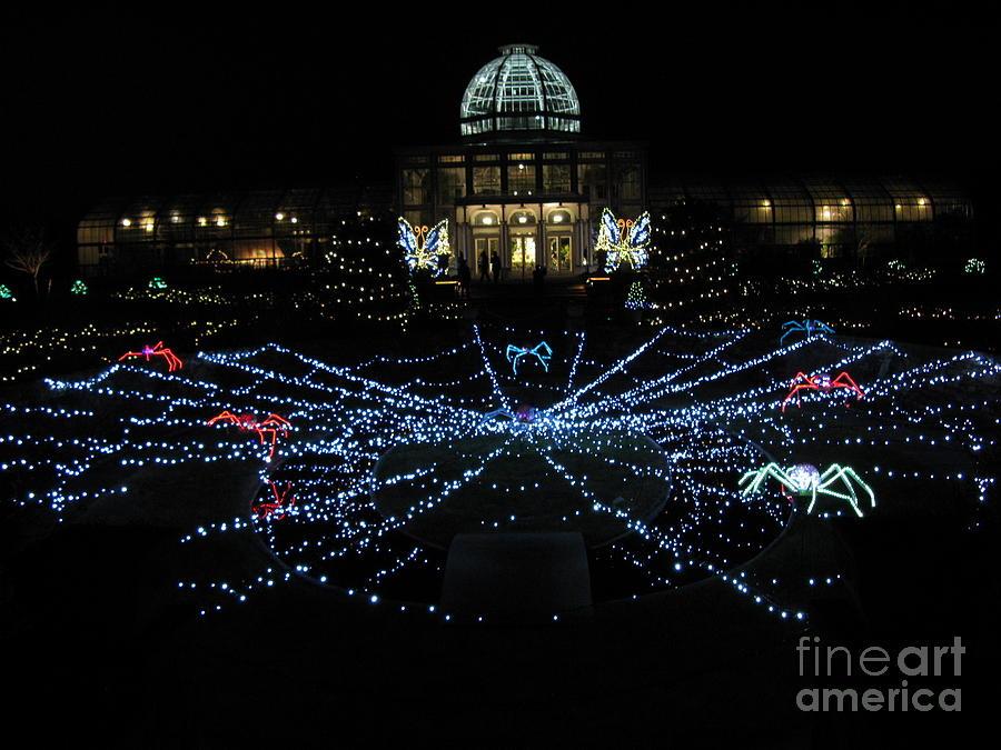 Fine Art Lighting Richmond