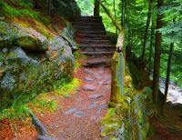 Mountain Stairway Photograph by James Tranz