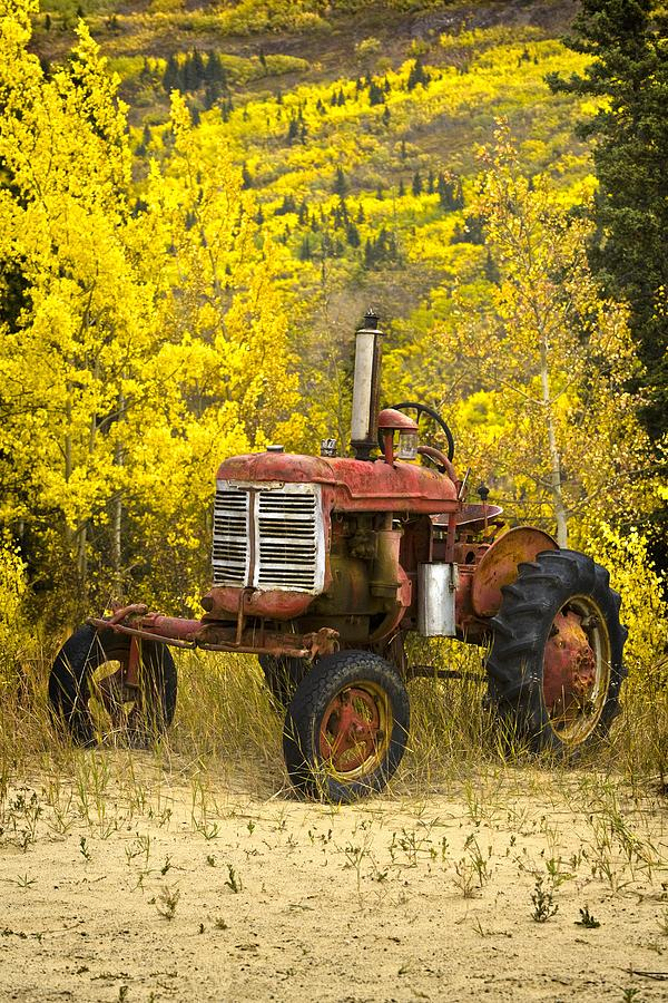 The Gallery For Gt Vintage Case Tractors