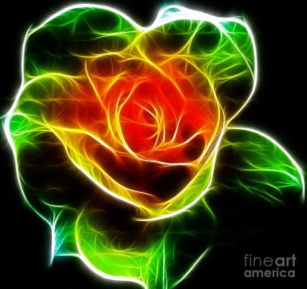 Rose Fractal Kami Mckeon
