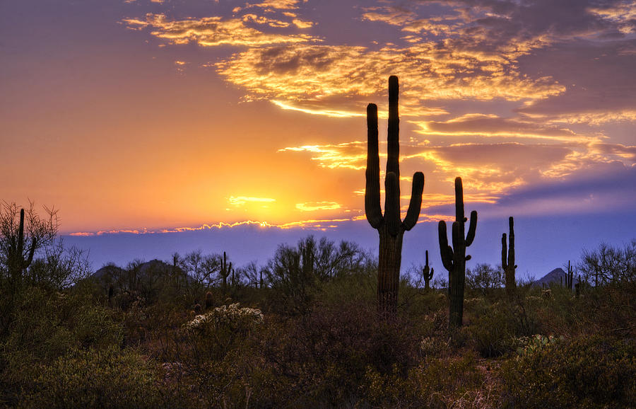 Southwest Desert Sunset Photograph By Saija Lehtonen