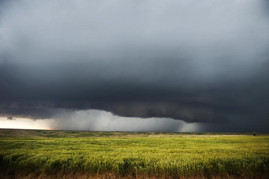 Iphone 6 Shelf Wallpaper Hd Storm And Rain Over Green Field Photograph By Jennifer