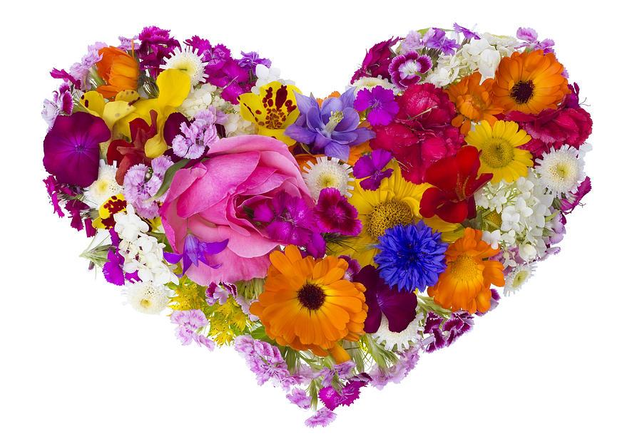 summer flowers heart concept