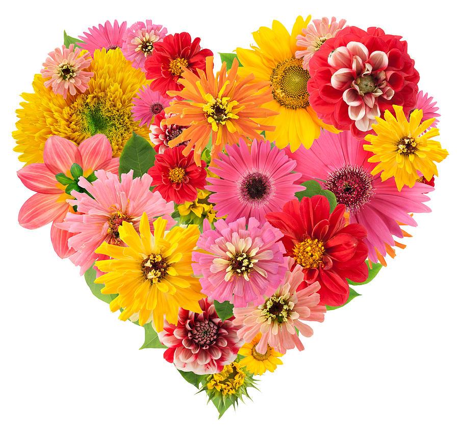 summers flowers heart photograph