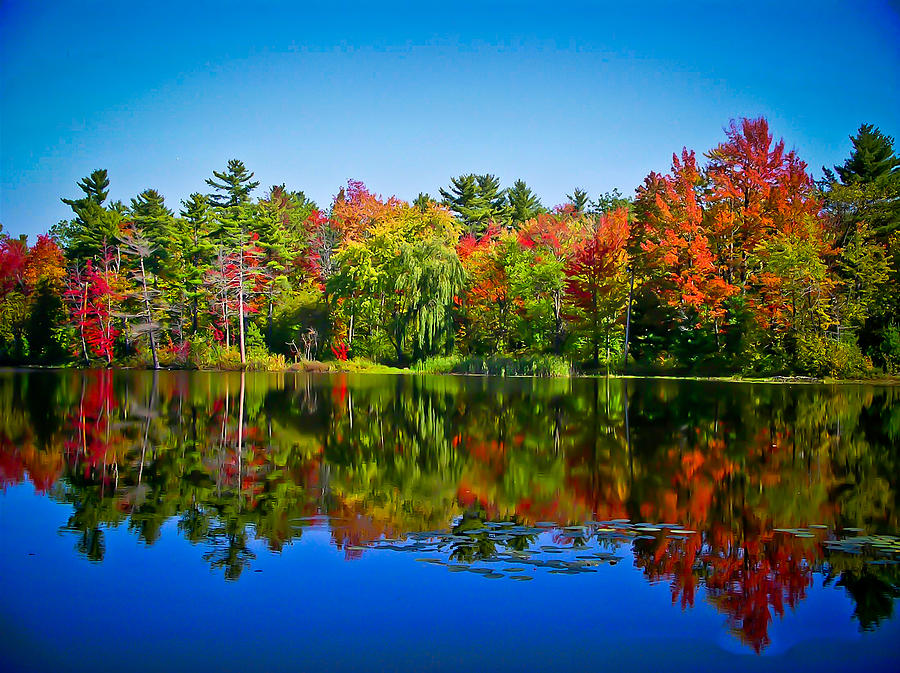 New England Fall Themed Wallpaper Trees In Peak Fall Colors Reflected On A Blue Lake