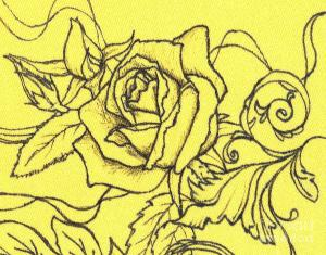 yellow rose hoag denise drawing canvas drawings 6th uploaded november which wall framed fineartamerica
