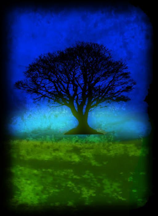 Tree Of Life Blue Skies by Robert R Splashy Art