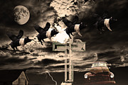 Featured - When Pigs Fly by Wingsdomain Art and Photography