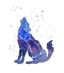 Galaxy Wolf Lupus Constellation Tote Bag for Sale by Olga Shvartsur